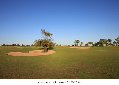 Landscape of a golf course.