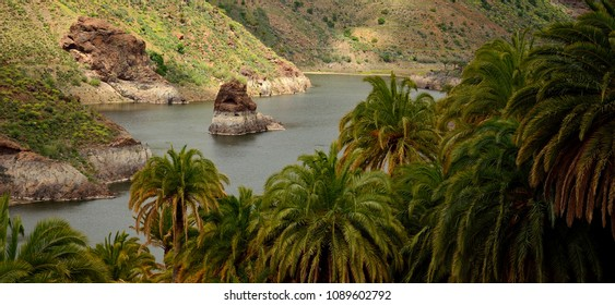 Landscape of Gran canaria, La sorrueda, dam and palm forest, Canary islands