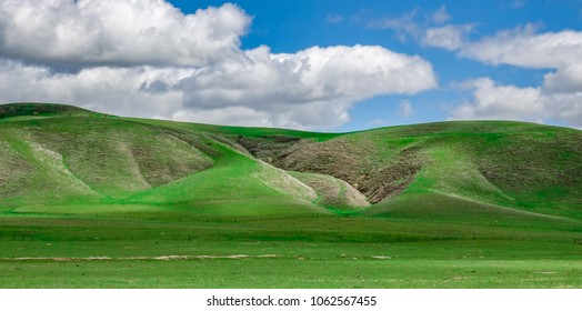 Landscape of grass covered hills in early spring in central California on a partly cloudy day with green hillsides and cloud.s