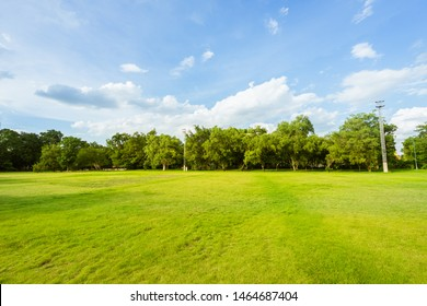 landscape of grass field and green environment public park use as natural background, backdrop.