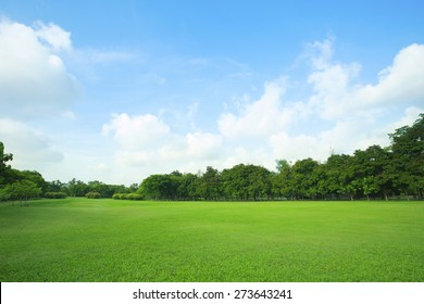 landscape of  grass field and green environment public park use as natural  background,backdrop - Shutterstock ID 273643241