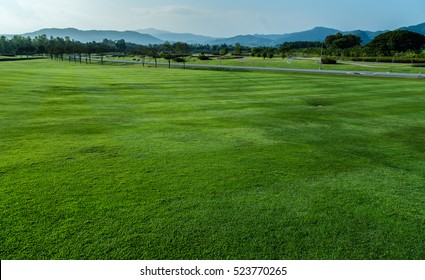 landscape of grass field and green environment public park use as natural background.