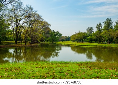 landscape of grass field in park or garden surrounded with green tree and water pond this place for relaxing exercise running or walking in park with  blue sky