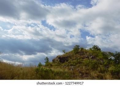 landscape of grass flower field blowing from wind on Khao Lon mountain in Thailand