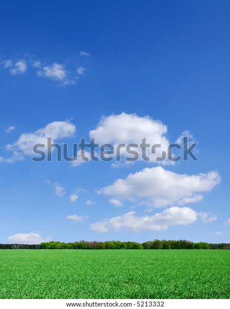 Landscape - Green field and the blue sky