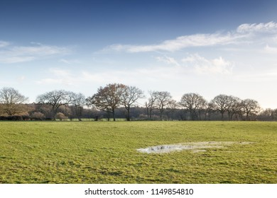 landscape of a green field with a large  puddles on a waterlogged field