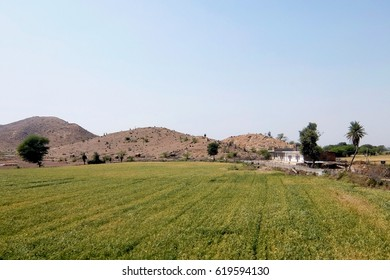 Landscape with green field, road, white house and mountains in India