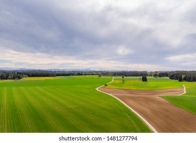 Landscape with green fields in the Bavarian Alpine foothills, Upper Bavaria, Bavaria Germany, Europe