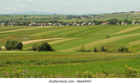 Landscape with green fields and row of houses in Poland