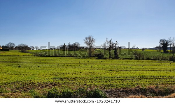 Landscape of the green fields with trees in the background, a winter sunny day