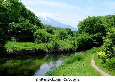 Landscape of the green forest, river, walking trail, Mount Fuji, and blue sky, Oshino, Yamanashi, Japan
