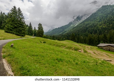 landscape with green glade among fir woods on Vivione pass narrow mountain road, shot in cloudy summer light in Scalve valley, Bergamo, Orobie, Lombardy, Italy