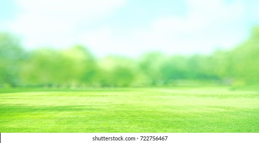 landscape green grass field with blur trees  background, watercolor effect