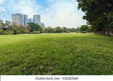 Landscape green grass field of public park