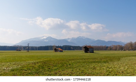 Landscape of green madows in bavaria with alps in background
