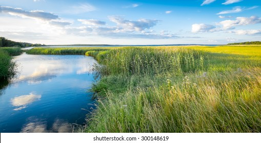 Landscape of green marshes and canals with beautiful reflections of clouds in blue water, and fields of yellow rapeseed in the background. Location: Swedish island of  Gotland in the Baltic Sea.