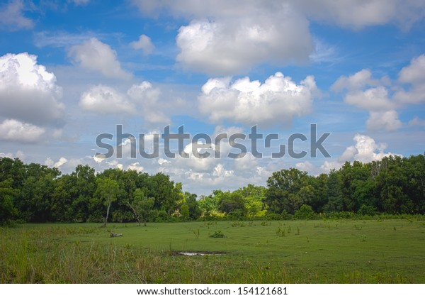 Landscape of green meadow and blue sky
