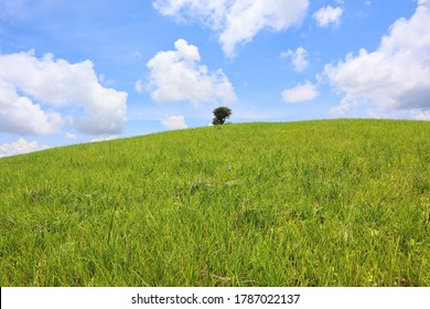 Landscape of green meadow covered with fresh grass in the summer mountains. mountains and bluesky. Mae Tho mountain. Chiang Mai, Thailand. grass mountain. Travel.