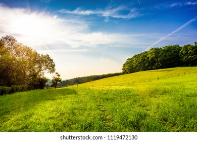 Landscape with green meadows at sunrise