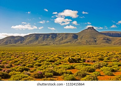 Landscape of green mountain in Tankwa Karoo