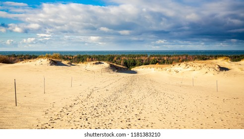 landscape from Grey Dunes at the Curonian Spit, Lithuania