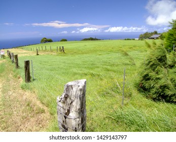 Landscape in Hawaii Big Island with a Beautiful sea view.