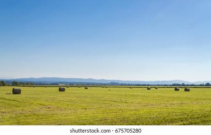 Landscape with hay, Croatia, Slavonia region