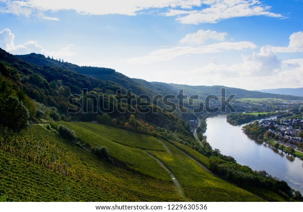 landscape of the hills with vineyards next the river Moesel in Germany