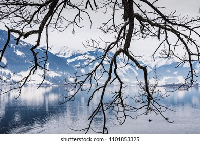 Landscape with hoarfrost on the branches of trees on the Zell am See lake. Austria