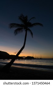 Landscape holiday view of Anse a l'Ane bay, with its beach, sand, landing stage, cocnut palm tree silhouette and peaceful Caribbean sea, under colorful dark sunset, Martinique, West Indies, Antilles.