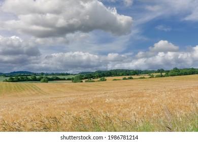 Landschaft in Holstein Schweiz bei Malente, Schleswig-Holstein, Deutschland