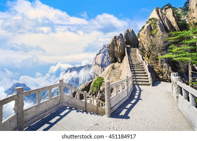 Landscape of Huangshan (Yellow Mountains). Huangshan Pine trees. Located in Anhui province in eastern China. It is a UNESCO World Heritage Site, and one of China's major tourist destinations.