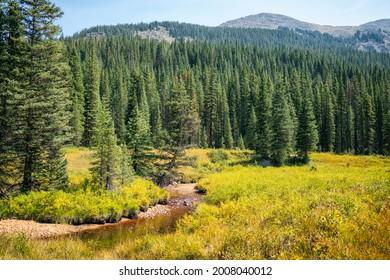 Landscape in the Hunter-Fryingpan Wilderness, Colorado