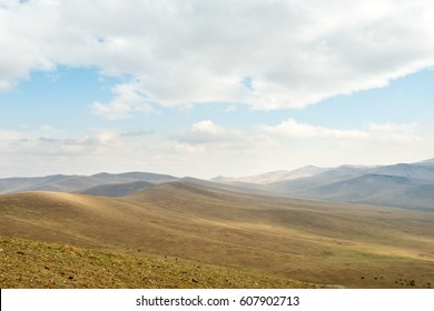 Landscape of Hustai National Park, Mongolia