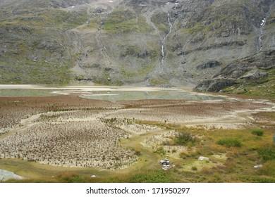 The landscape illustrating ecological succession on the former glacier lake
