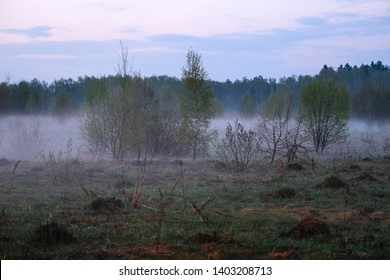 Landscape with the image of lake Seliger bank in Russia
