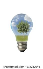 landscape inside one lightbulb