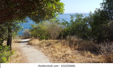 a landscape of isola d'elba: the road to the sea