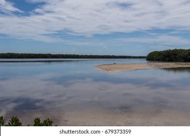 Landscape, J.N. ''Ding'' Darling National Wildlife Refuge, Sanibel Island, Florida, USA