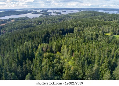 Landscape of Kuopio from a tower in a sunny day at summer full of nature
