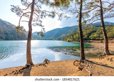 Landscape of Lake Borabay (Boraboy), also known as Lake Kocabey, is a landslide-dammed lake in Tasova, Amasya Province, Turkey. The lake and its surroundings were declared a nature park in 2014.