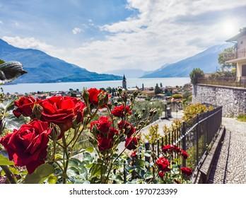 Landscape of Lake Como from Domaso