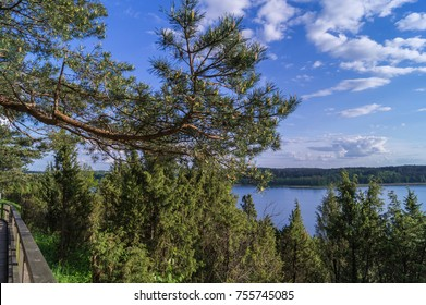Landscape with lake and forest from Lietuva.