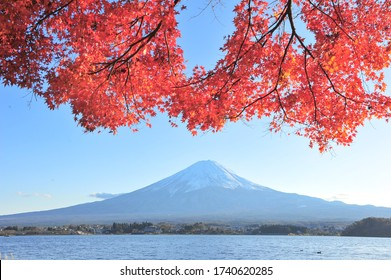 Landscape of Lake Kawaguchiko with Fuji Mountain and Red Maple in Autumn at Japan