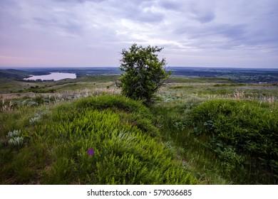 Landscape lake morning grass