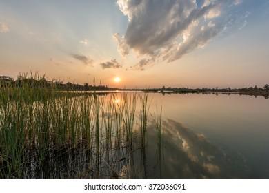 landscape of lake on sunset sky background