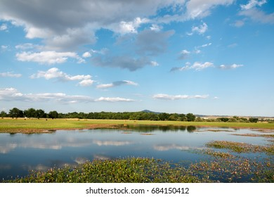 Landscape with lake and pasture in Manzanares del Real, Madrid. Spain