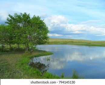 landscape lake river of reeds, greenery summer landscape.