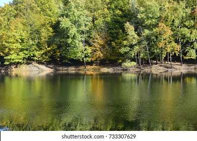 landscape of lake and trees on the background,Lake of trees of withering and autumn
