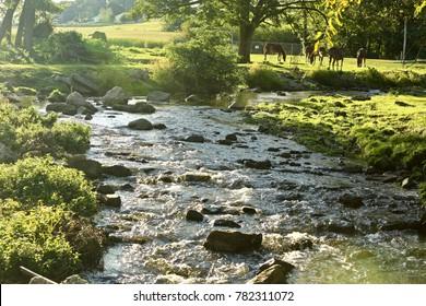 landscape of Lancaster PA